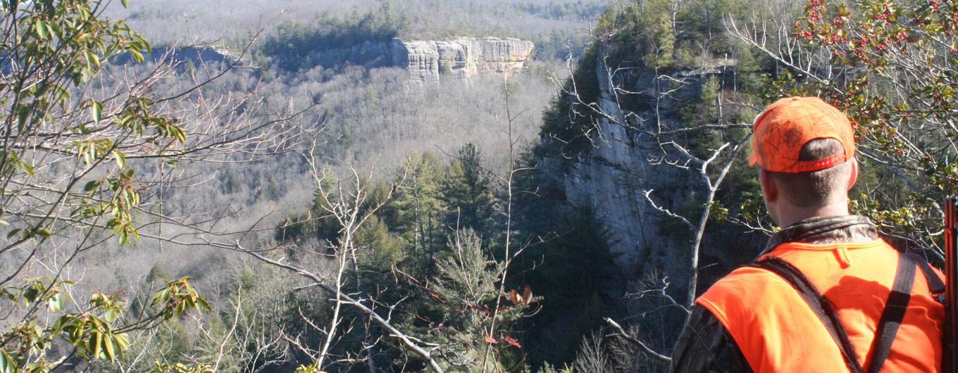A hunter looks across an expansive valley lined by sandstone bluffs in the Big South Fork National River & Recreation Area.