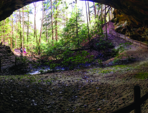 Hike of the Month: Middle Creek Nature Loop