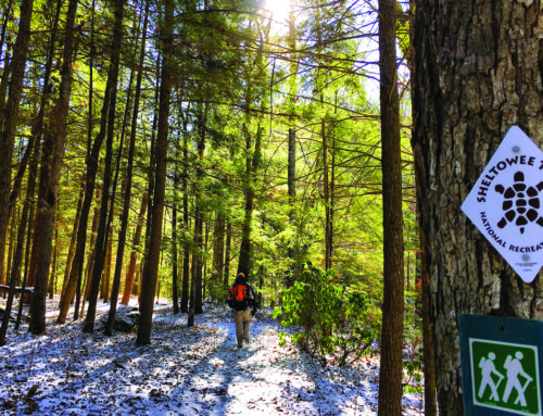 Five great hikes for Christmas