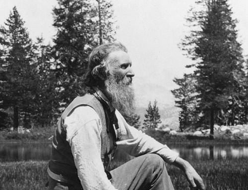 John Muir's first mountains were the Cumberlands